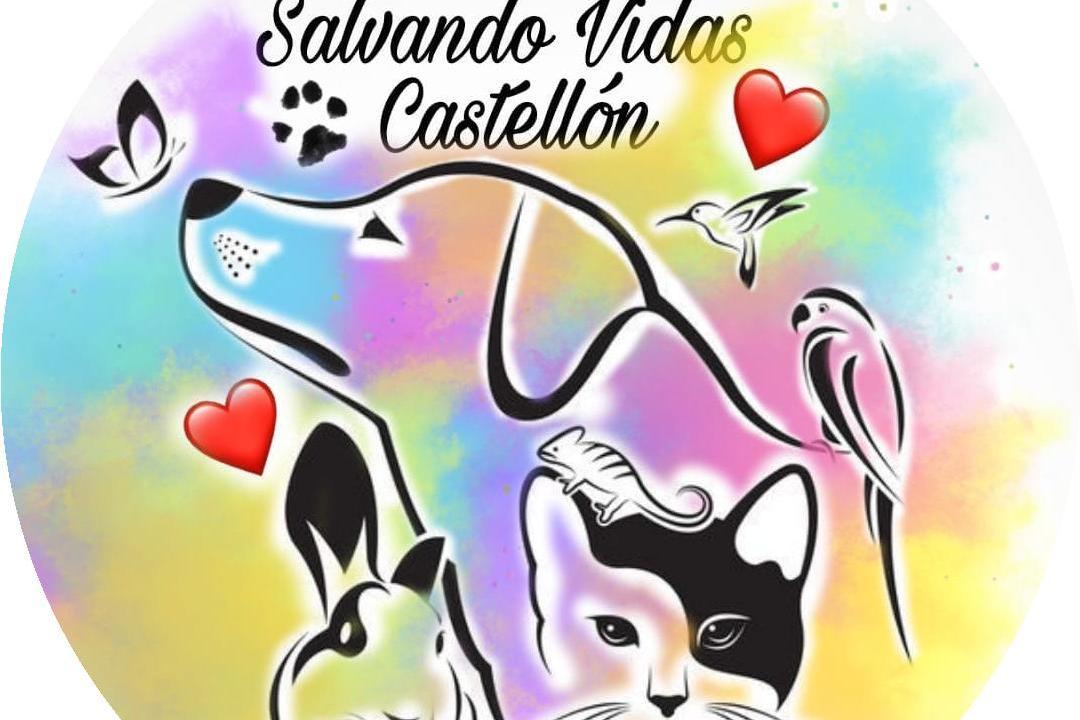 SALVANDO VIDAS CASTELLÓN