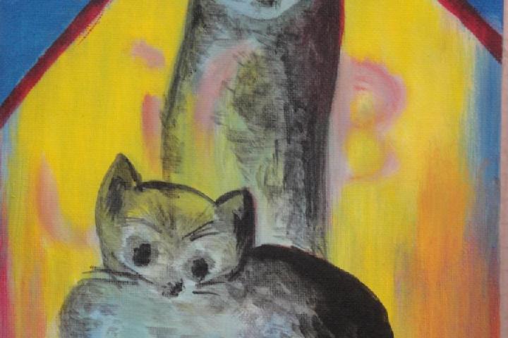 des maisons pour les chats