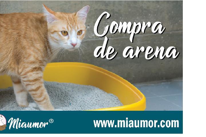 COMPRAR ARENA PARA LOS GATOS | MIAUMOR