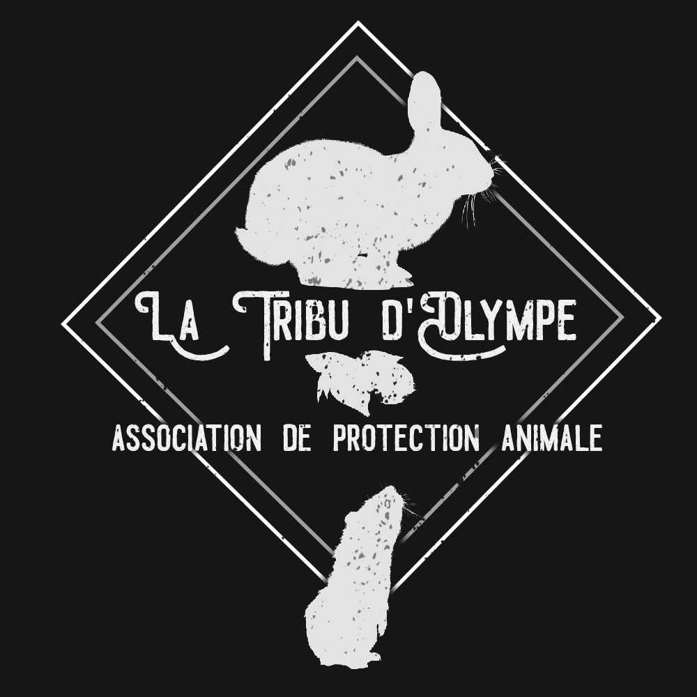 La tribu d'Olympe