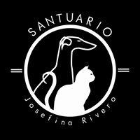 PROTECTORA DE ANIMALES SANTUARIO JOSEFINA RIVERO Y SU PERRO WILLY/ADDANCA