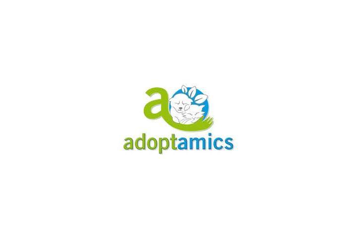 Adoptamics Novelda