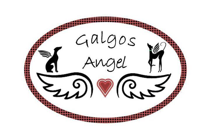 GALGOS ANGEL