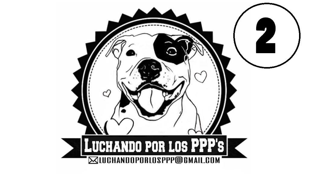 LUCHANDO POR LOS PPP'S - 2