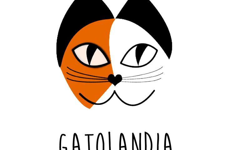 GATOLANDIA ZARAGOZA