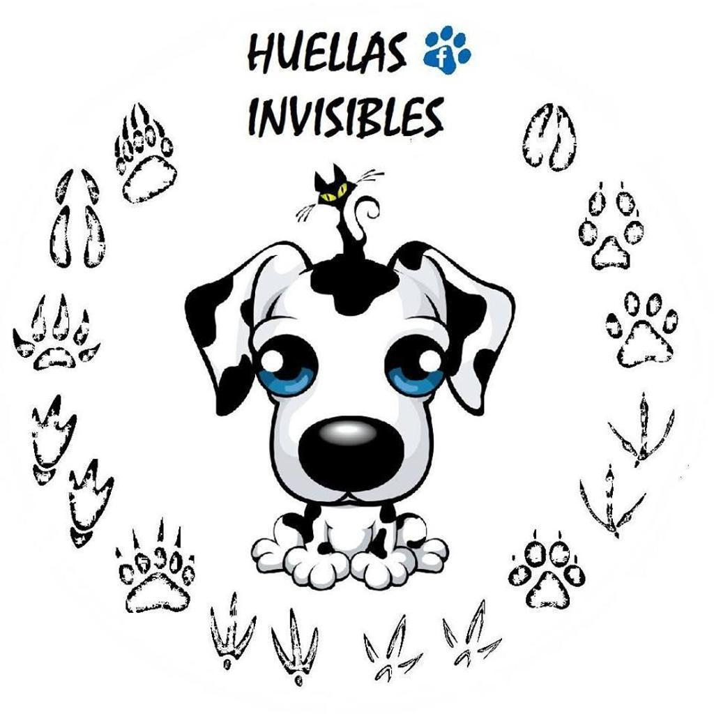 huellas invisibles