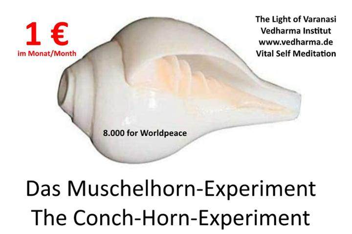 Conch Horn Experiment | Vedharma | The Light of Varanasi