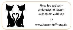 Katzenhoffnung by Finca los gatitos - Hilfe für spanische Katzen