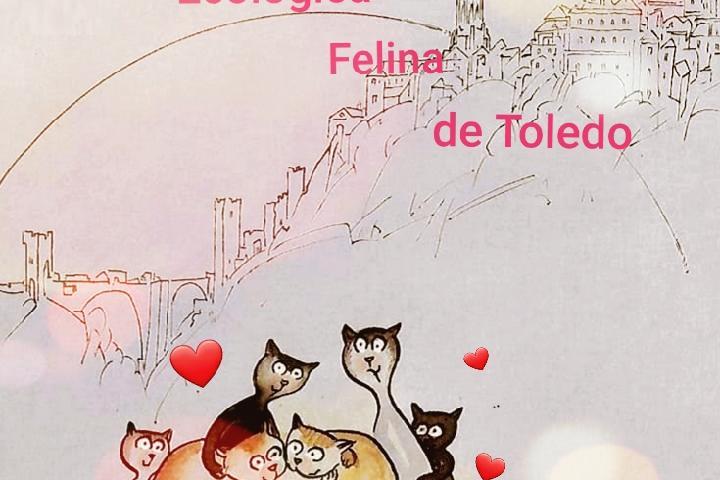 Asociación Ecológica Felina de Toledo