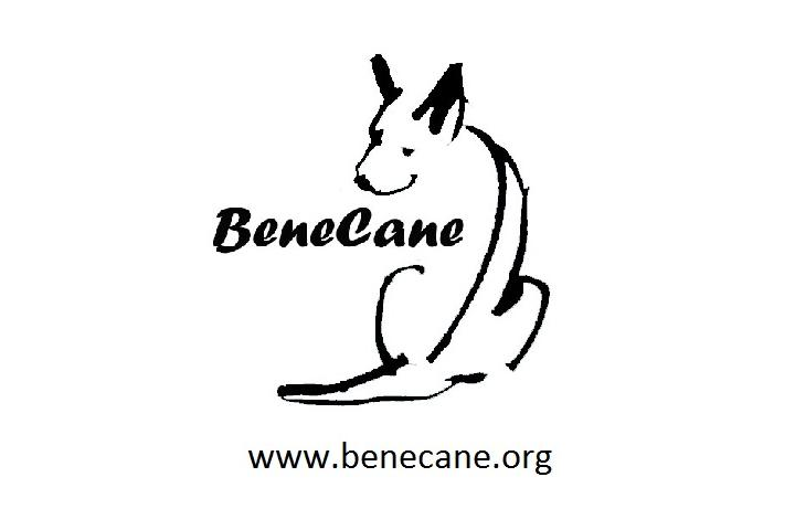 Asociación Protectora de Animales BeneCane