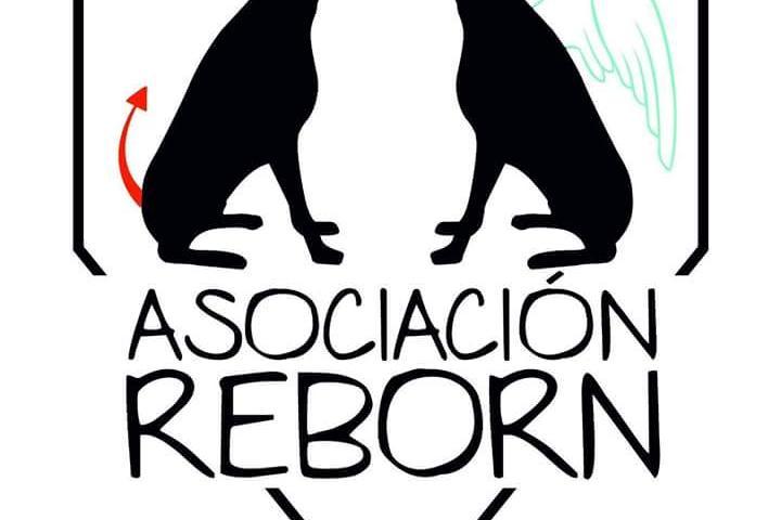 Asociación REBORN