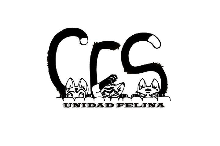 CES Unidad Felina
