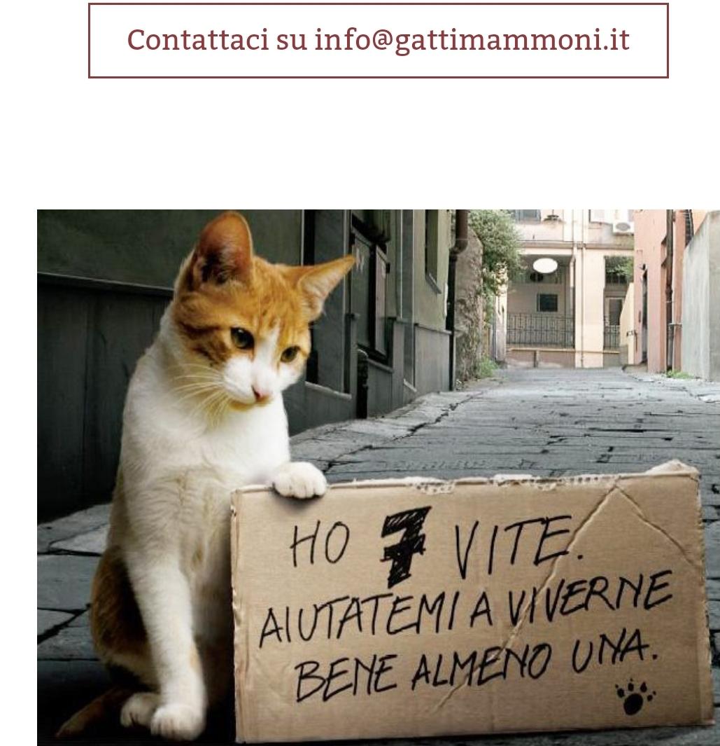 Associazione Gatti mammoni Onlus