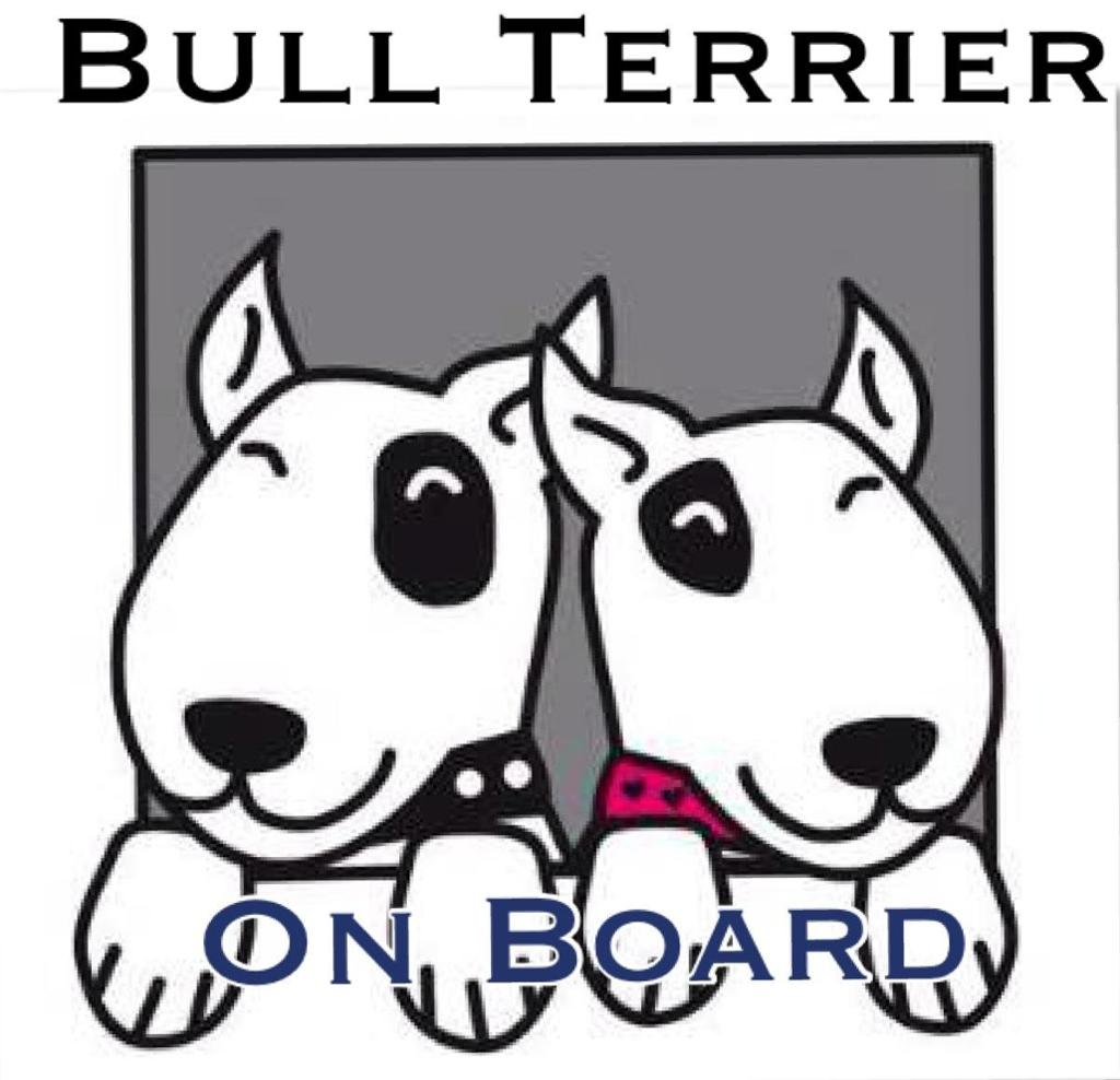 El Rincón de Bull Terrier Adopta España