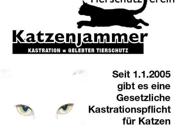 Tierschutzverein Katzenjammer e.V.