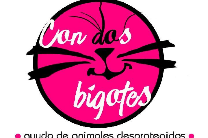 CON DOS BIGOTES