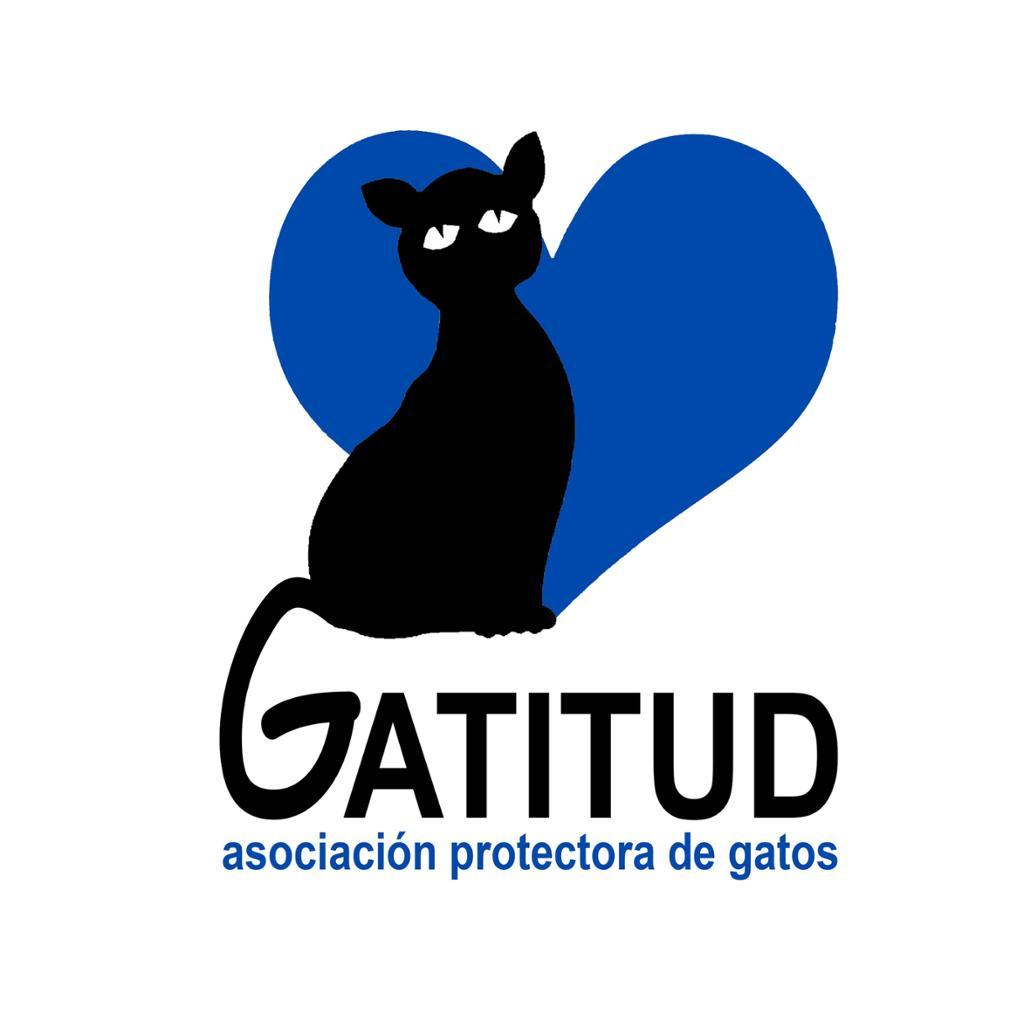 Gatitud Asociación Protectora de los Gatos