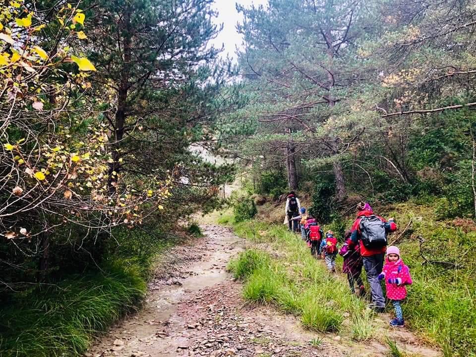 Escuela bosque Caxico