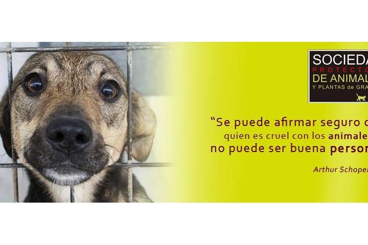 Sociedad Protectora de Animales de Granada