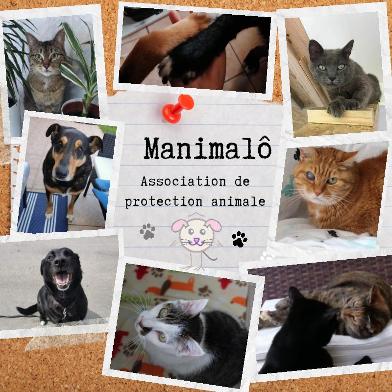 Manimalô