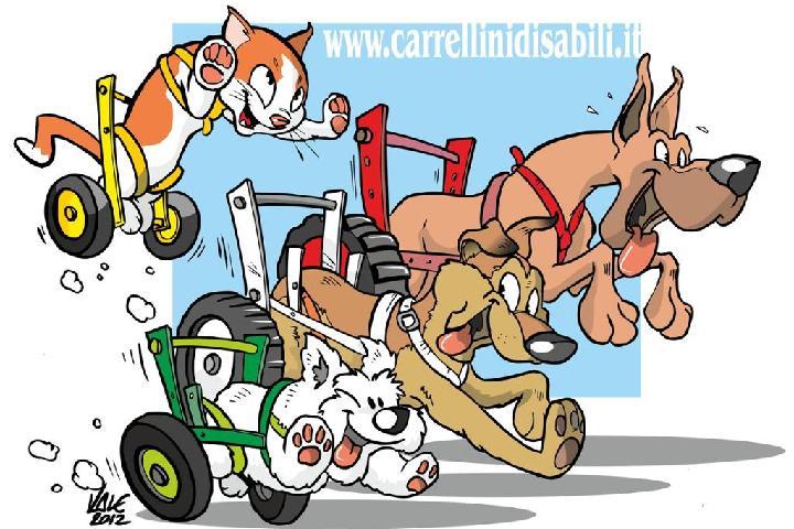 Comitato Carrellini Disabili