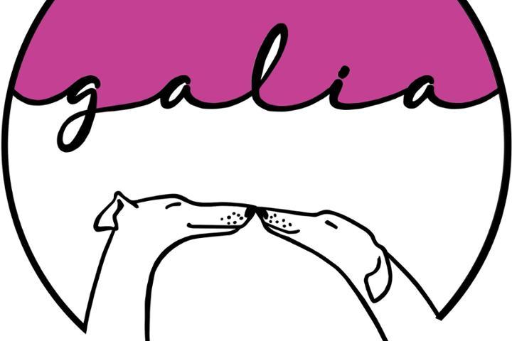 GALIA RESCATE ANIMAL