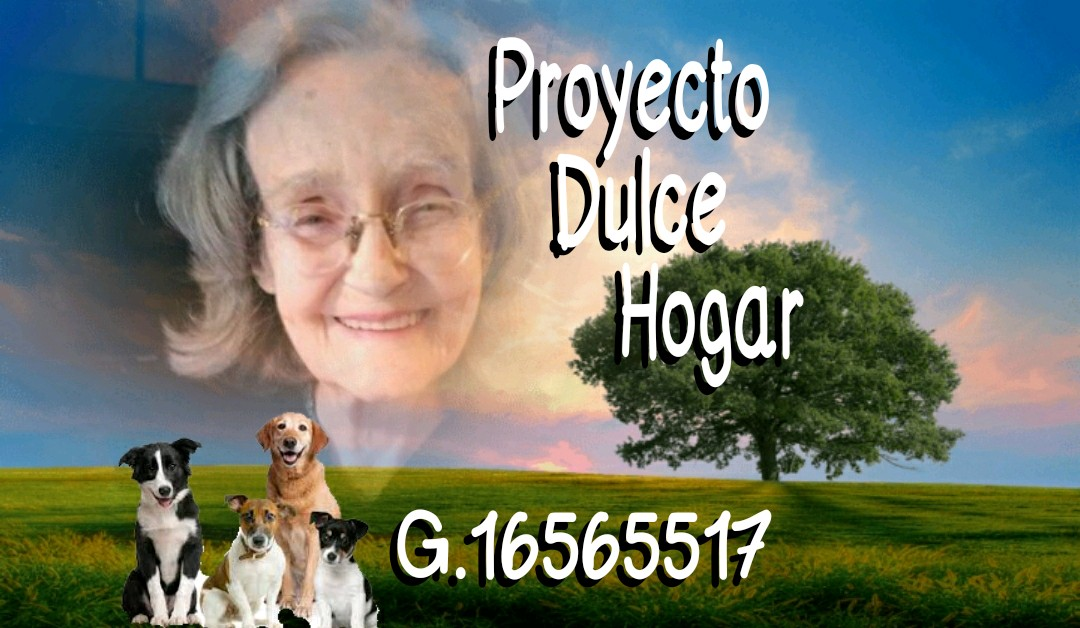 Proyecto Dulce Hogar