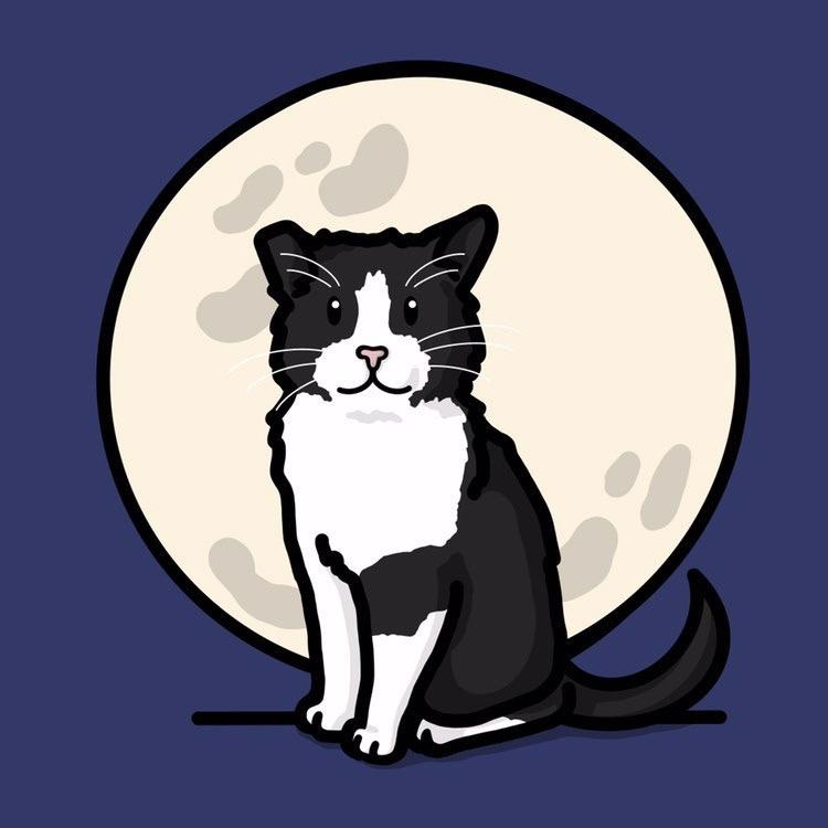 Gatos Luna Llena