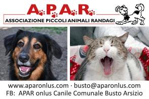 A.P.A.R. Associazione Piccoli Animali Randagi Onlus