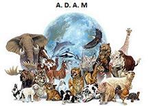 ASSOCIATION ADAM (association des animaux maltraités)