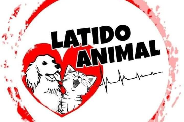 APA Latido Animal