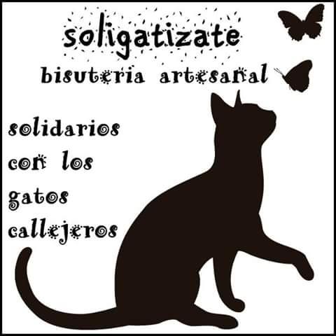 SOLIGATIZADOS