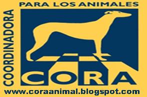 CORA ANIMAL ESPAÑA