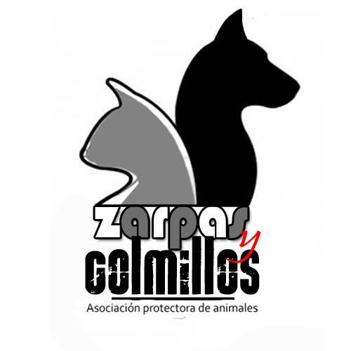 CES, control de colonias Zarpas y Colmillos