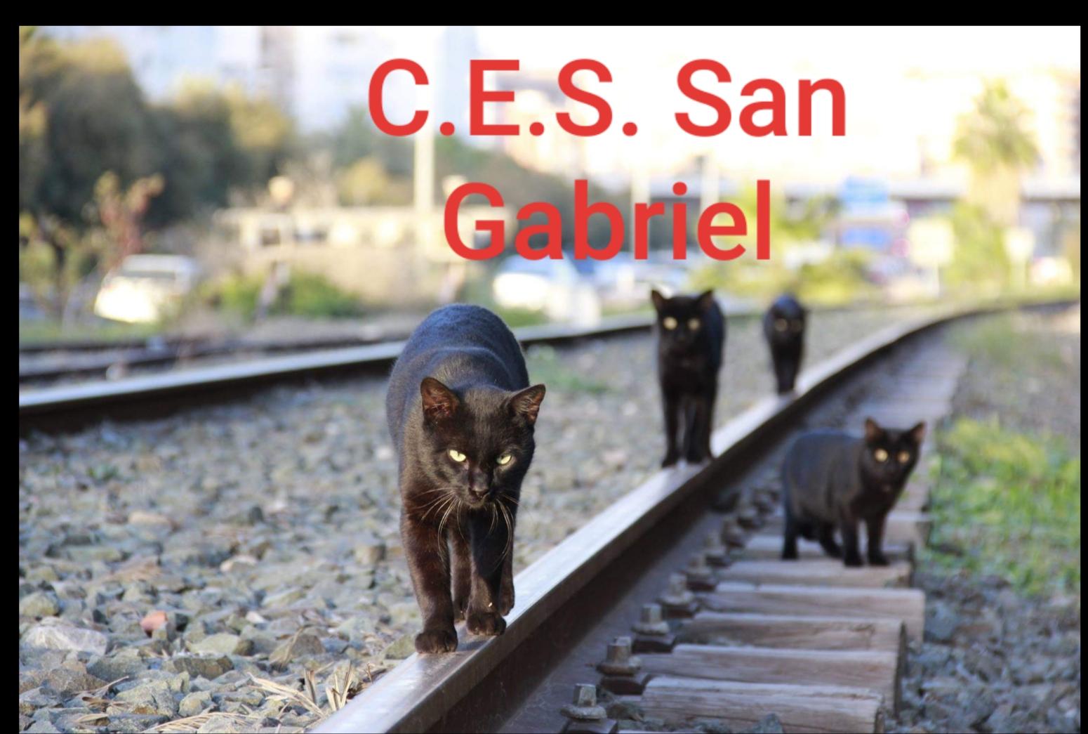 Gatos CES San Gabriel
