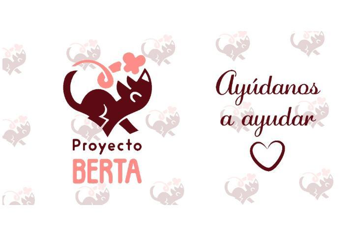 PROYECTO BERTA