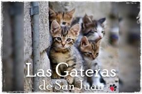 Las Gateras de San Juan