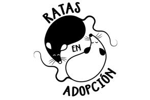 Ratas en Adopcion
