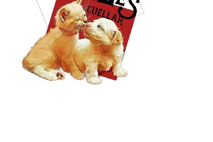 SOS Animales Cuéllar