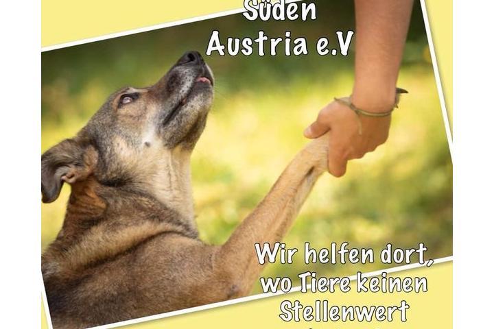 TIERHILFE SÜDEN AUSTRIA