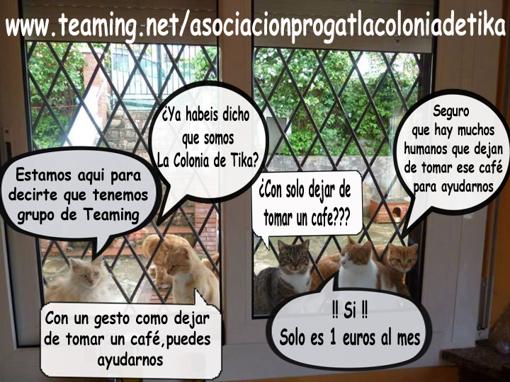 Asociación Progat La Colonia de Tika