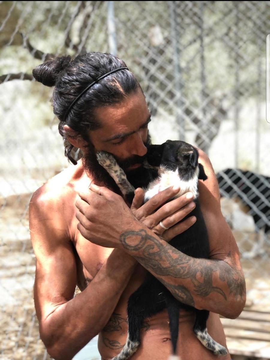 Friends of Bronx familia animal shelter