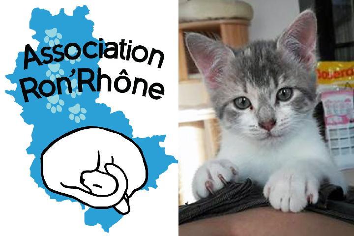 Association Ron'Rhône