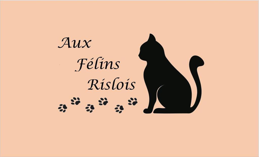 Aux Félins Rislois
