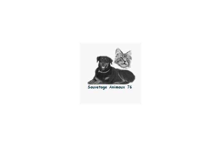 Sos Association Sauvetage des Animaux 76 pour nos sauvetages
