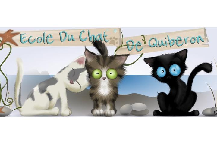 Ecole du Chat de Quiberon