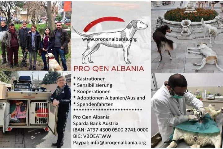 Pro Qen Albania