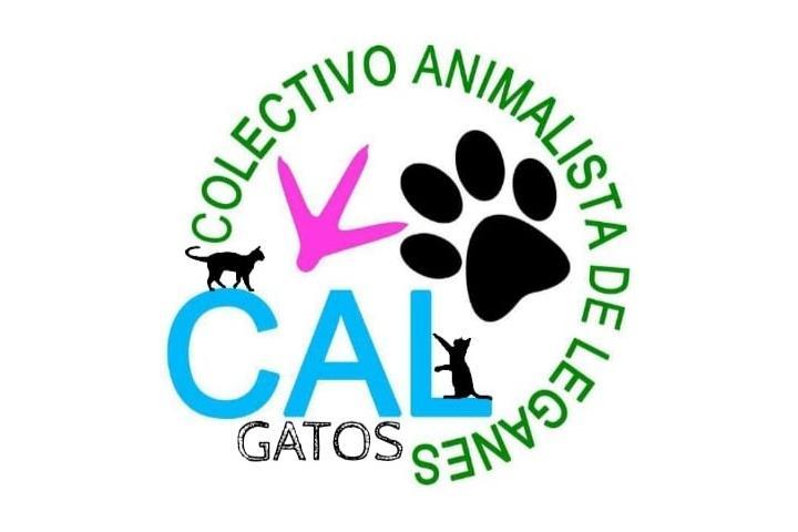 CAL- Adopt a cat