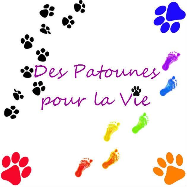 DES PATOUNES POUR LA VIE Protection Animale
