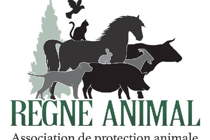 ASSOCIATION REGNE ANIMAL